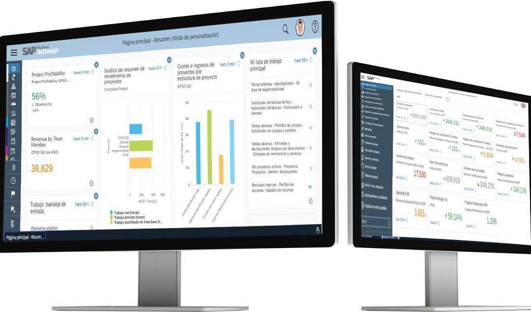 ERP SAP Business ByDesign para sector distribución